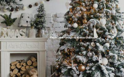 Utraditionel julepynt er det nye sorte!